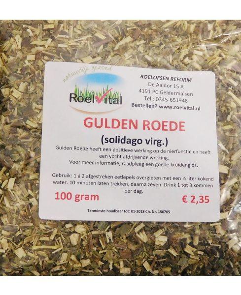 Gulden Roede (solidago)